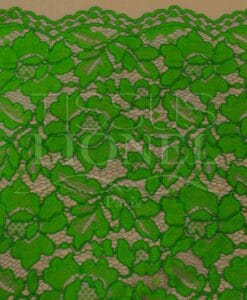 Dentelle rebrodé vert