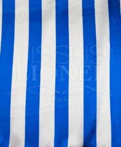 Carnaval blauwe en witte strepen