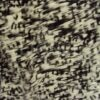 напечатанный над диапазон коричневого меха шиншиллы