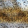 fourrure imprimé velboas savana