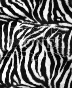 fourrure imprimé velboas zebré