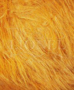 fourrure poil long lion
