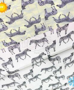 Jersey Magique Zebre
