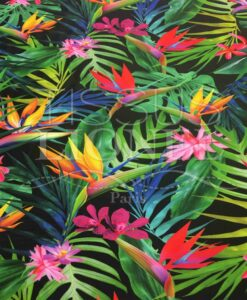 Lycra exotic printed