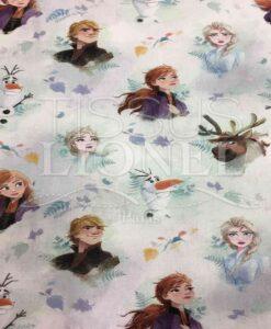 Tissu Disney La Reine des neiges 2