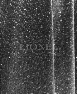 Velvet argento scintillante di paillettes nero
